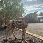 outside horse 1