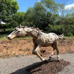 outside horse 3